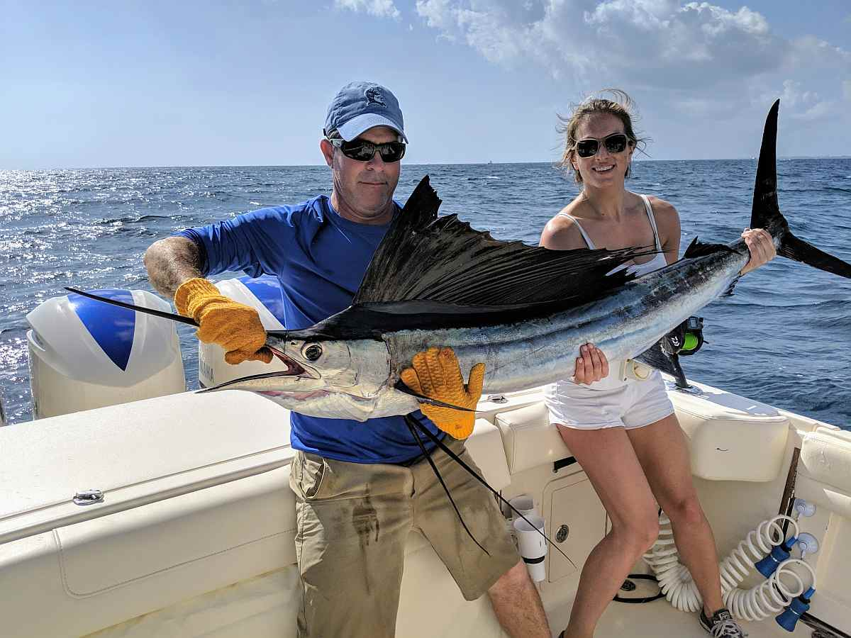 Palm Beach Sailfish