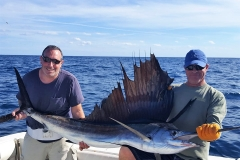 catch-release-sailfish-fishing-ocean-ridge-florida-feb2017
