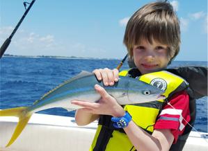 catch fish blue devil florida